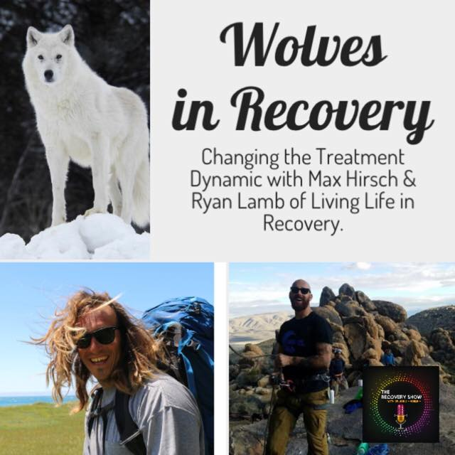 Wolves in Recovery